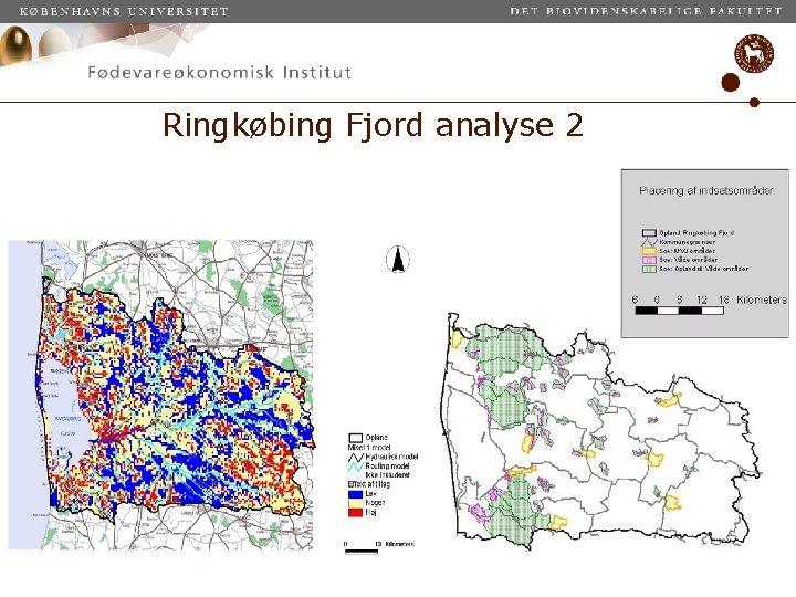Ringkøbing Fjord analyse 2