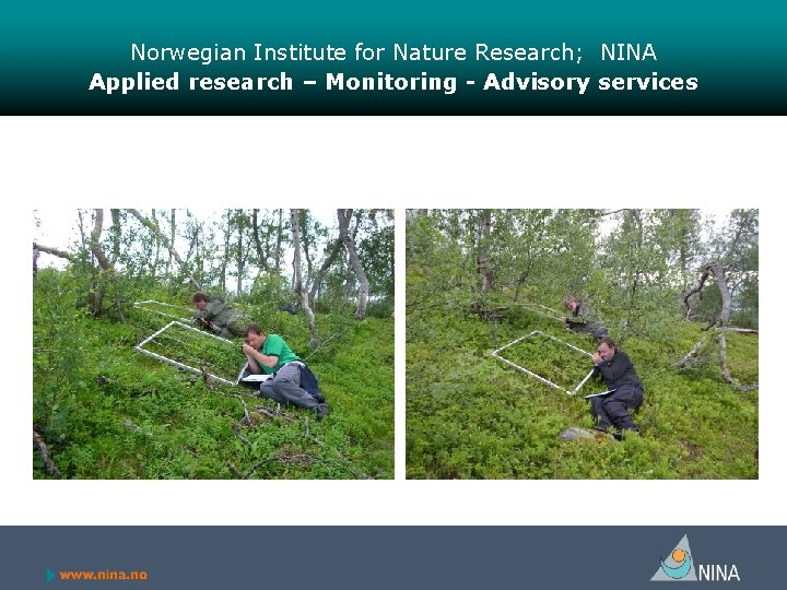 Norwegian Institute for Nature Research; NINA Applied research – Monitoring - Advisory services
