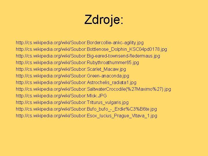 Zdroje: http: //cs. wikipedia. org/wiki/Soubor: Bordercollie-ankc-agility. jpg http: //cs. wikipedia. org/wiki/Soubor: Bottlenose_Dolphin_KSC 04 pd