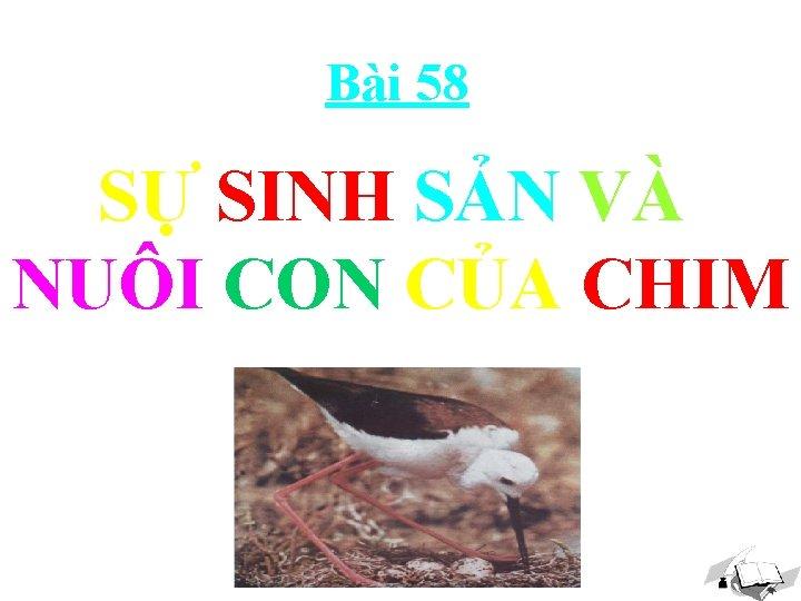 Bài 58 SỰ SINH SẢN VÀ NUÔI CON CỦA CHIM