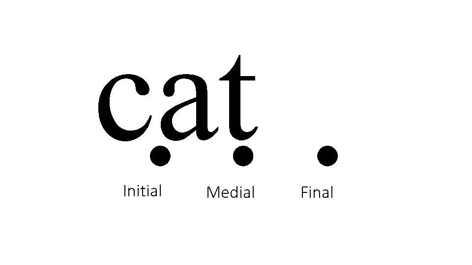 cat Initial Medial Final