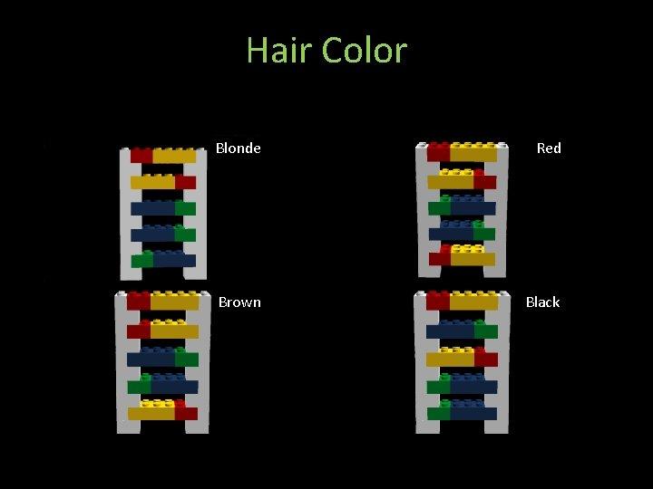 Hair Color Blonde Red Brown Black