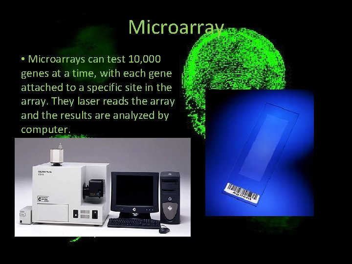 Microarray • Microarrays can test 10, 000 genes at a time, with each gene