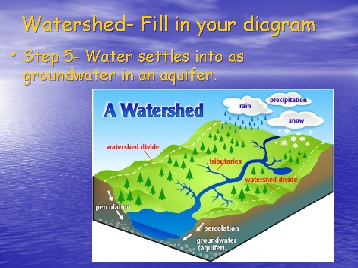 Watershed- Fill in your diagram • Step 5 - Water settles into as groundwater