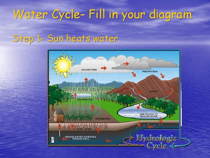 Water Cycle- Fill in your diagram Step 1 - Sun heats water.