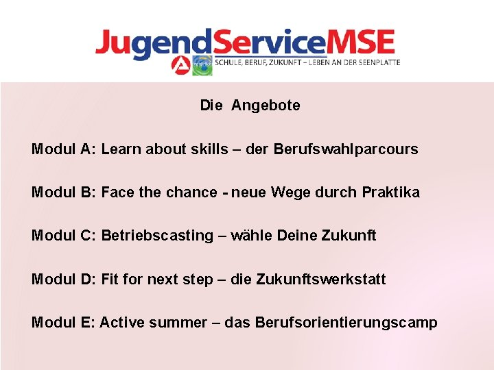 Die Angebote Modul A: Learn about skills – der Berufswahlparcours Modul B: Face