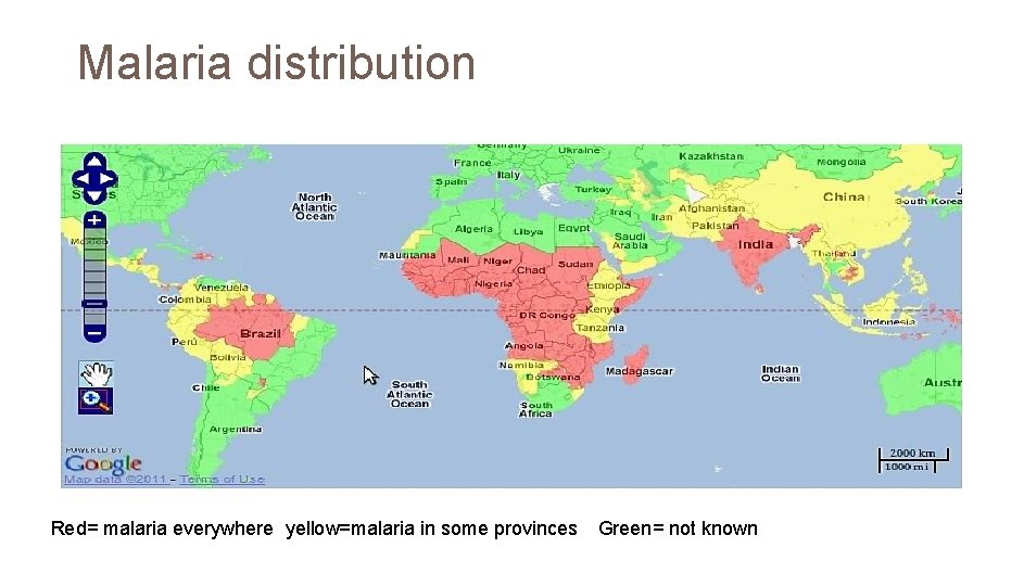 Malaria distribution Red= malaria everywhere yellow=malaria in some provinces Green= not known