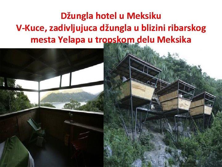 Džungla hotel u Meksiku V-Kuce, zadivljujuca džungla u blizini ribarskog mesta Yelapa u tropskom