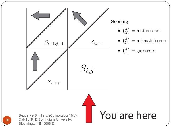 10 Sequence Similiarty (Computation) M. M. Dalkilic, Ph. D So. I Indiana University, Bloomington,