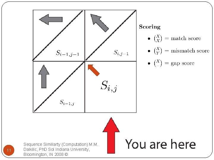 11 Sequence Similiarty (Computation) M. M. Dalkilic, Ph. D So. I Indiana University, Bloomington,