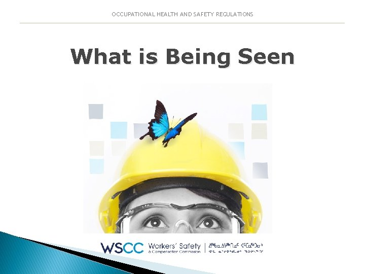 OCCUPATIONAL HEALTH AND SAFETY REGULATIONS What is Being Seen