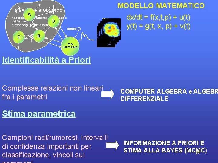 MODELLO MATEMATICO + + SISTEMA FISIOLOGICO A . . . Assorbimento, trasporto, utilizzazione del