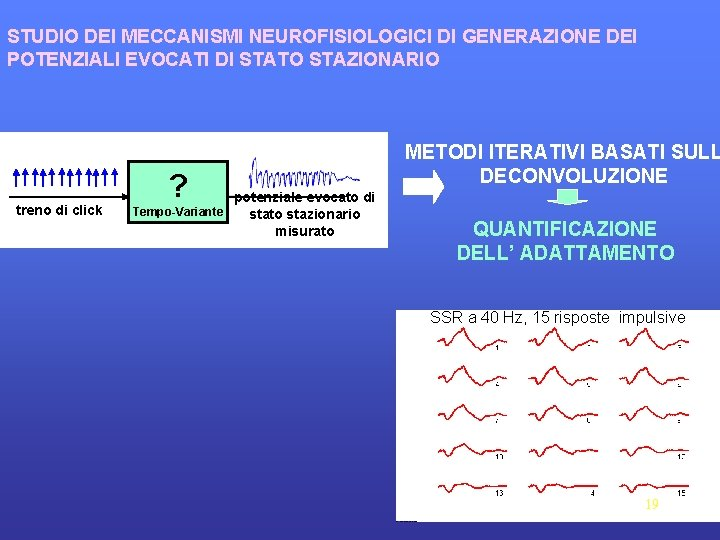 STUDIO DEI MECCANISMI NEUROFISIOLOGICI DI GENERAZIONE DEI POTENZIALI EVOCATI DI STATO STAZIONARIO treno di