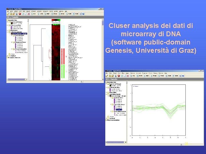 Cluser analysis dei dati di microarray di DNA (software public-domain Genesis, Università di Graz)