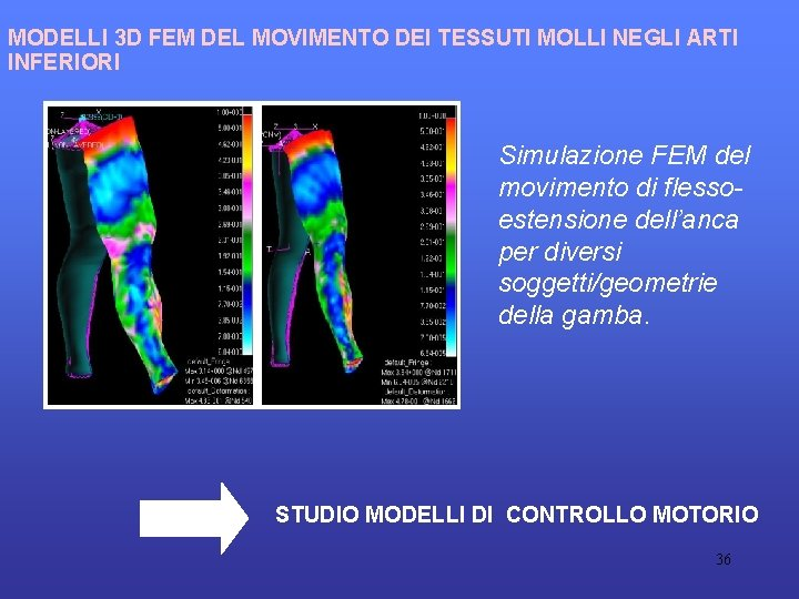 MODELLI 3 D FEM DEL MOVIMENTO DEI TESSUTI MOLLI NEGLI ARTI INFERIORI Simulazione FEM