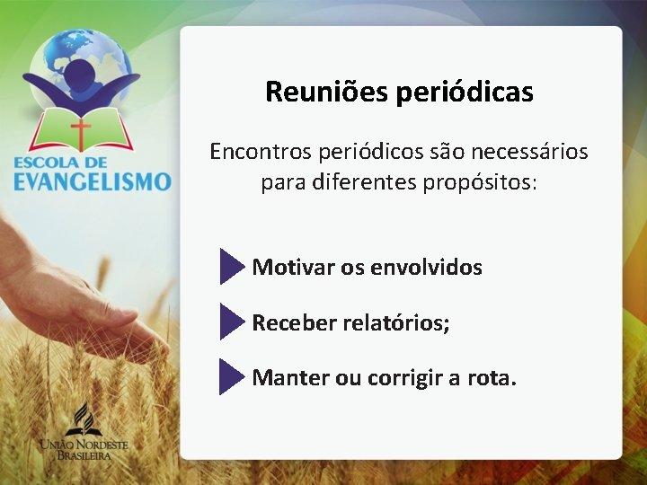 Reuniões periódicas Encontros periódicos são necessários para diferentes propósitos: Motivar os envolvidos Receber relatórios;