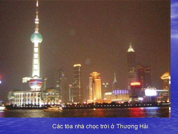 Các tòa nhà chọc trời ở Thượng Hải