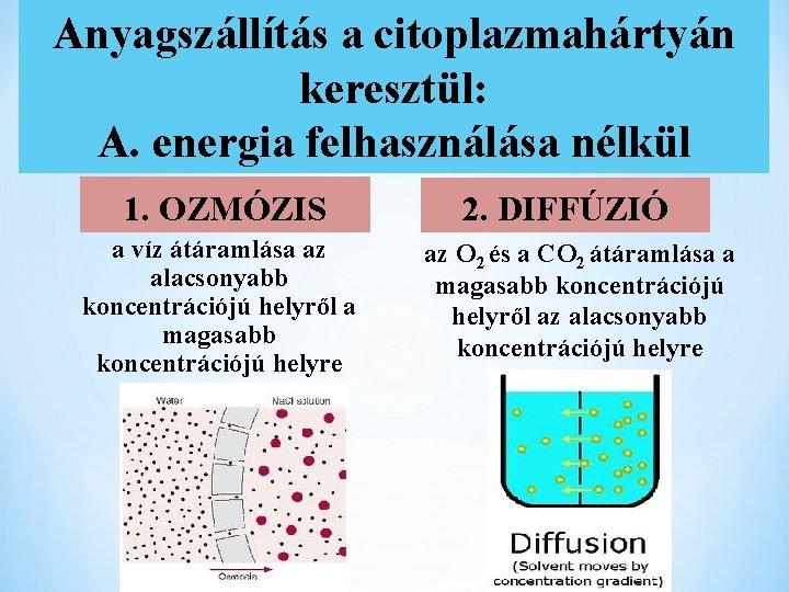 Anyagszállítás a citoplazmahártyán keresztül: A. energia felhasználása nélkül 1. OZMÓZIS a víz átáramlása az