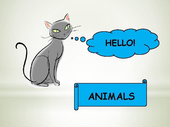 HELLO! ANIMALS