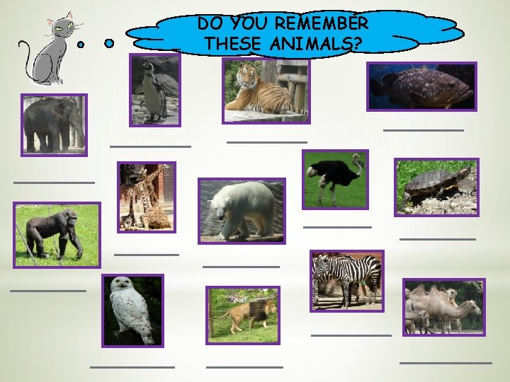 DO YOU REMEMBER THESE ANIMALS?