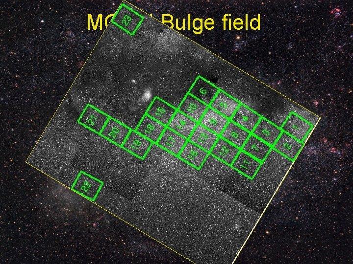 MOA-II Bulge field