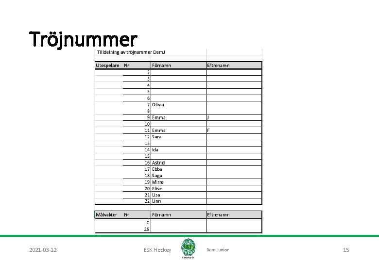 Tröjnummer 2021 -03 -12 ESK Hockey Dam-Junior 15