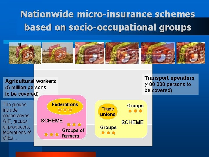 Nationwide micro-insurance schemes based on socio-occupational groups Transport operators (400 000 persons to be