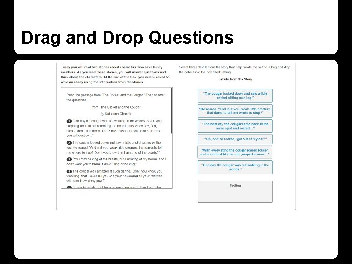 Drag and Drop Questions