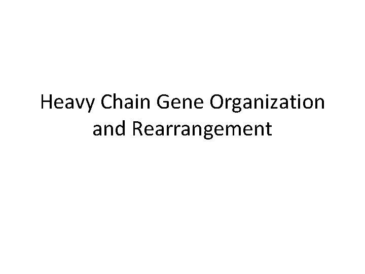 Heavy Chain Gene Organization and Rearrangement