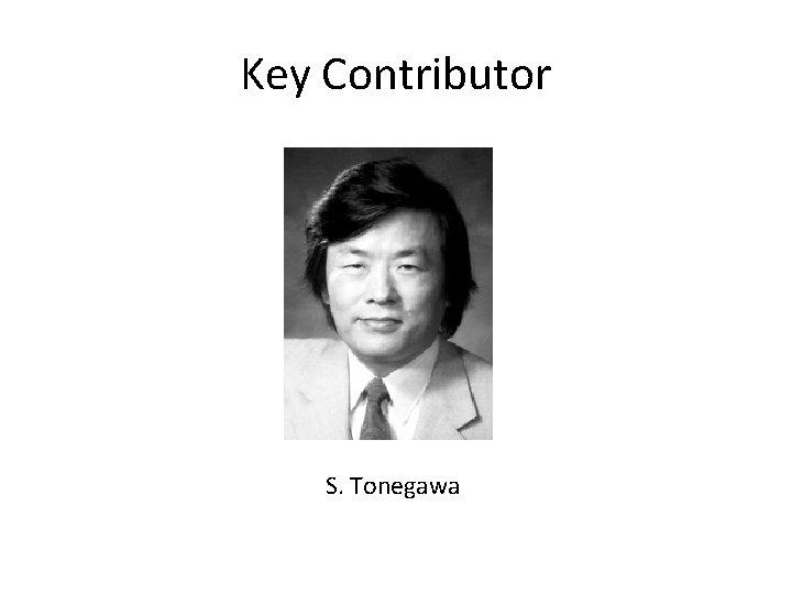 Key Contributor S. Tonegawa