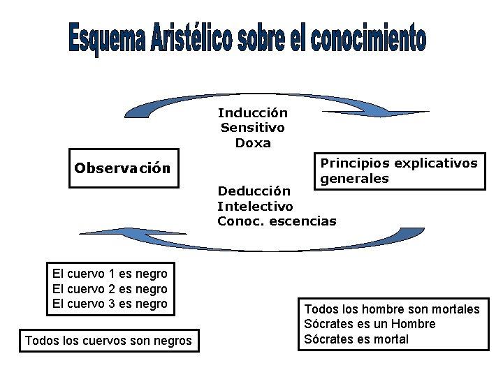 Inducción Sensitivo Doxa Observación Principios explicativos generales Deducción Intelectivo Conoc. escencias El cuervo 1