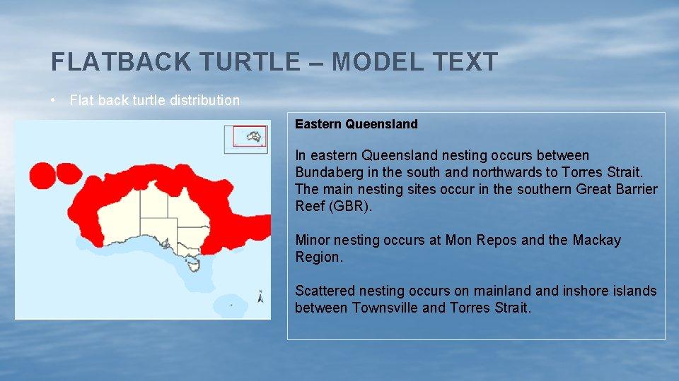 FLATBACK TURTLE – MODEL TEXT • Flat back turtle distribution Eastern Queensland In eastern