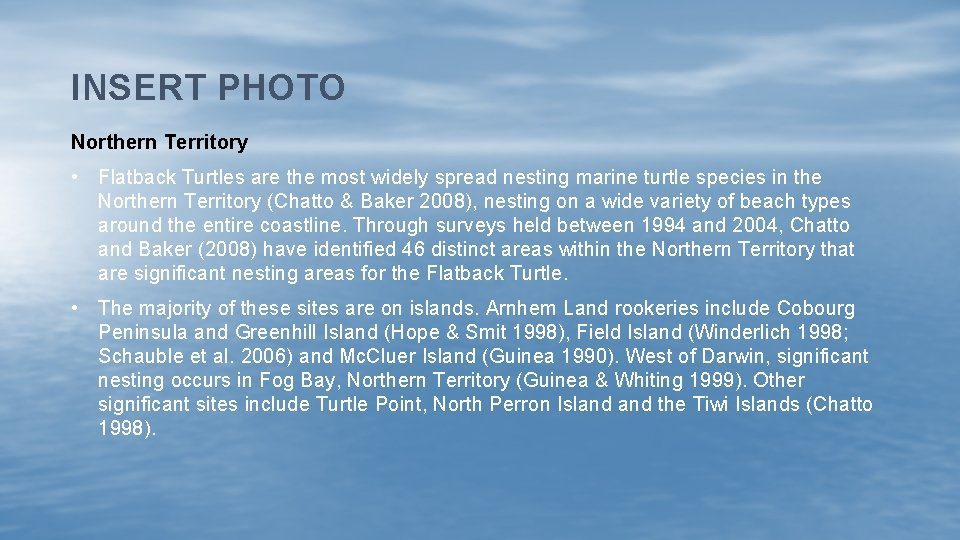 INSERT PHOTO Northern Territory • Flatback Turtles are the most widely spread nesting marine