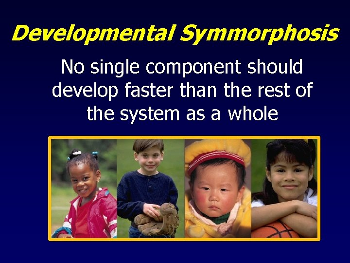 Developmental Symmorphosis No single component should develop faster than the rest of the system
