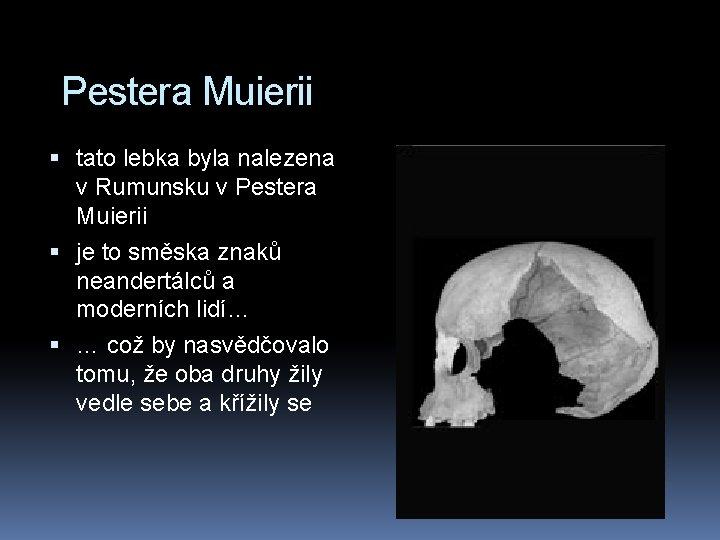 Pestera Muierii tato lebka byla nalezena v Rumunsku v Pestera Muierii je to směska
