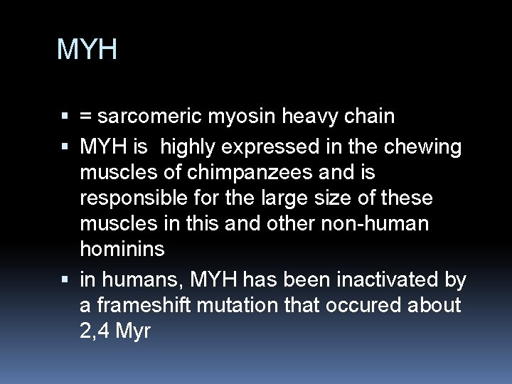 MYH = sarcomeric myosin heavy chain MYH is highly expressed in the chewing muscles