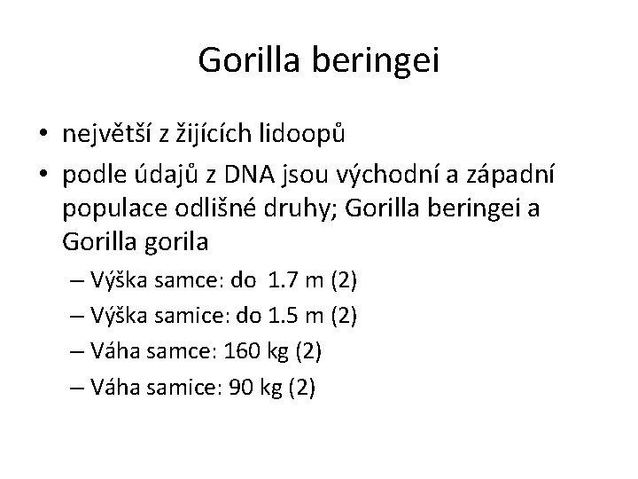 Gorilla beringei • největší z žijících lidoopů • podle údajů z DNA jsou východní