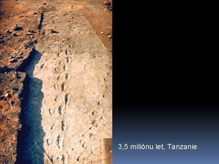 3, 5 miliónu let, Tanzanie