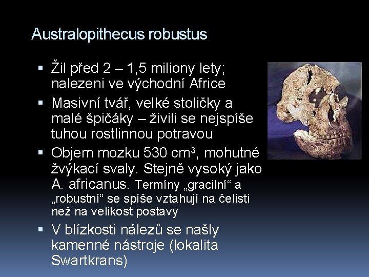 Australopithecus robustus Žil před 2 – 1, 5 miliony lety; nalezeni ve východní Africe