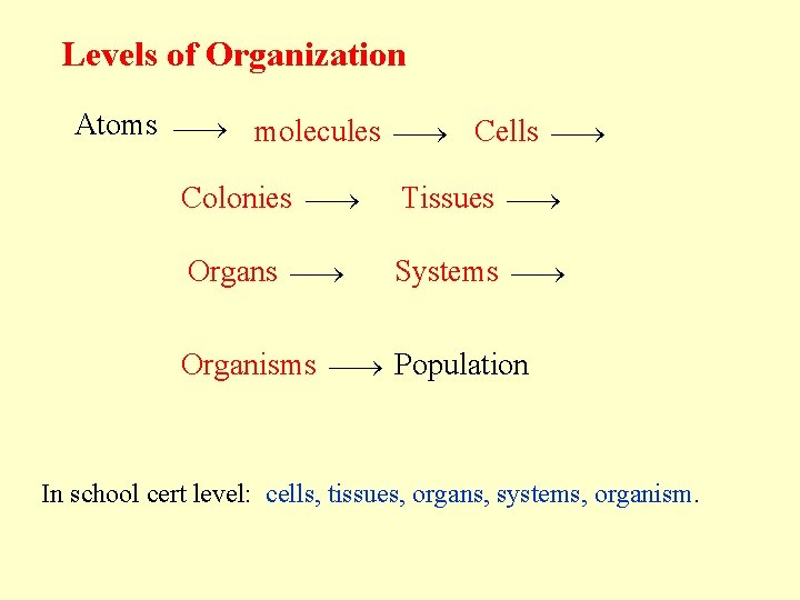 Levels of Organization Atoms molecules Cells Colonies Tissues Organs Systems Organisms Population In school