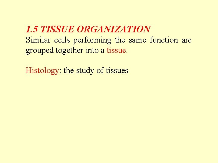 1. 5 TISSUE ORGANIZATION Similar cells performing the same function are grouped together into