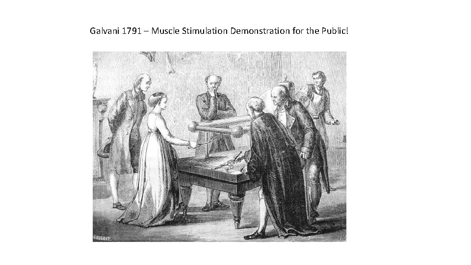 Galvani 1791 – Muscle Stimulation Demonstration for the Public!