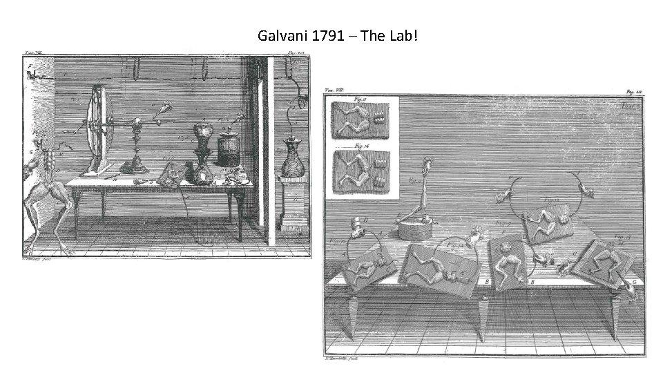 Galvani 1791 – The Lab!