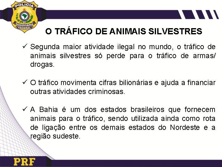 O TRÁFICO DE ANIMAIS SILVESTRES ü Segunda maior atividade ilegal no mundo, o tráfico