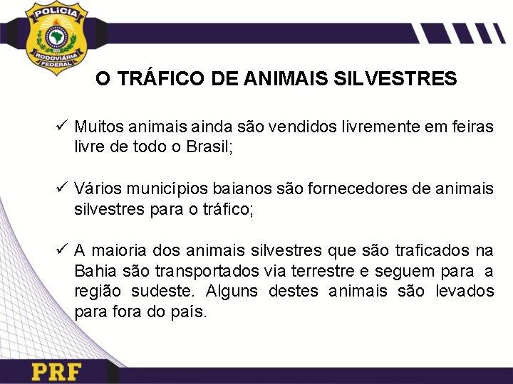 O TRÁFICO DE ANIMAIS SILVESTRES ü Muitos animais ainda são vendidos livremente em feiras