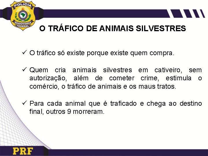 O TRÁFICO DE ANIMAIS SILVESTRES ü O tráfico só existe porque existe quem compra.