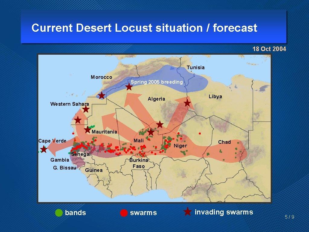 Current Desert Locust situation / forecast 18 Oct 2004 Tunisia Morocco Spring 2005 breeding