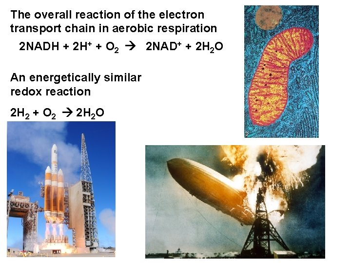 The overall reaction of the electron transport chain in aerobic respiration 2 NADH +