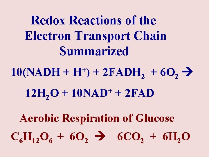 Redox Reactions of the Electron Transport Chain Summarized 10(NADH + H+) + 2