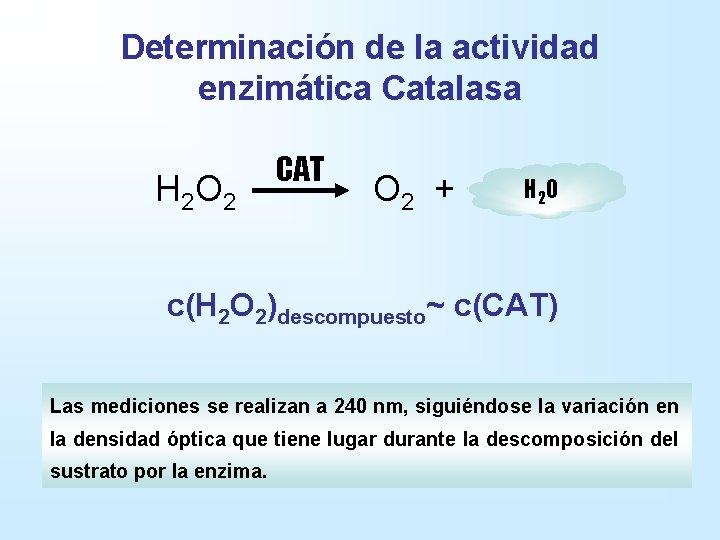 Determinación de la actividad enzimática Catalasa H 2 O 2 CAT O 2 +